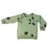 raglan sweater frog